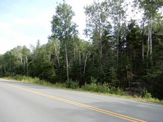 Photo 7: Pictou Landing Road in Pictou Landing: 108-Rural Pictou County Vacant Land for sale (Northern Region)  : MLS®# 202118664