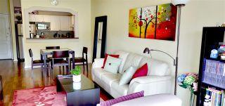 Photo 7: 208 8380 JONES Road in Richmond: Brighouse South Condo for sale : MLS®# R2379296