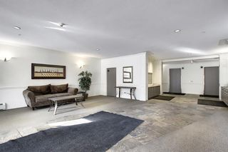 Photo 42: 218 838 19 Avenue SW in Calgary: Lower Mount Royal Apartment for sale : MLS®# A1070596