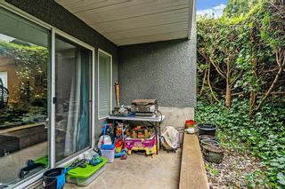 """Photo 6: 1 5700 200 Street in Langley: Langley City Condo for sale in """"LANGLEY VILLAGE"""" : MLS®# R2594360"""