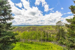 Photo 31: 306064 Plummers Road W: Rural Foothills County Land for sale : MLS®# A1026801