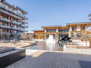 Photo 39: 301 23 Mahogany Circle SE in Calgary: Mahogany Apartment for sale : MLS®# A1099284