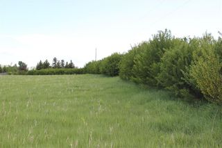 Photo 4: 198010 96th ST W: Rural Foothills County Land for sale : MLS®# C4253512