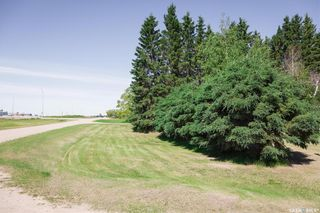 Photo 5: Shellbrook Acreage in Shellbrook: Residential for sale (Shellbrook Rm No. 493)  : MLS®# SK839801