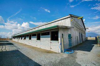 Photo 27: 1280 POWERHOUSE Road in Abbotsford: Sumas Prairie House for sale : MLS®# R2565055