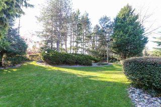 "Photo 16: 113 12890 17 Avenue in Surrey: Crescent Bch Ocean Pk. Condo for sale in ""Ocean Park Place"" (South Surrey White Rock)  : MLS®# R2567260"