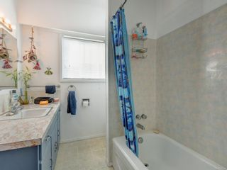 Photo 8: 447 S Stannard Ave in : Vi Fairfield West House for sale (Victoria)  : MLS®# 885268