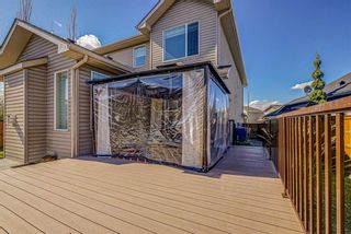 Photo 43: 26 BRIGHTONWOODS Bay SE in Calgary: New Brighton Detached for sale : MLS®# A1110362