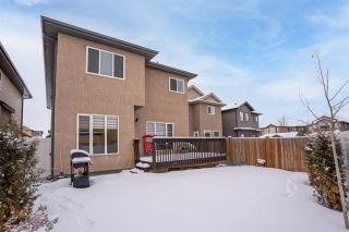 Photo 48: 808 ALBANY Cove in Edmonton: Zone 27 House for sale : MLS®# E4227367