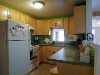 Photo 41: 14 Pine Crescent in Portage la Prairie RM: House for sale : MLS®# 202108298