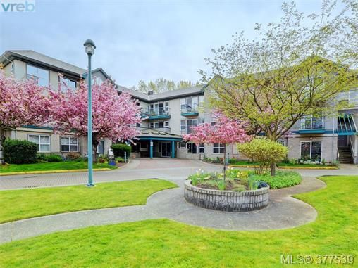 Main Photo: 310 1485 Garnet Rd in VICTORIA: SE Cedar Hill Condo for sale (Saanich East)  : MLS®# 757974