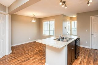 Photo 14: 3814 Allan Drive in Edmonton: Zone 56 Attached Home for sale : MLS®# E4255416