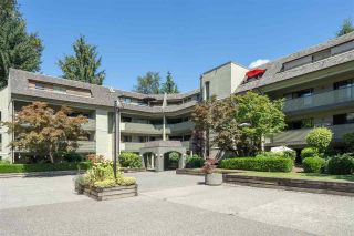 """Photo 26: 401 1210 PACIFIC Street in Coquitlam: North Coquitlam Condo for sale in """"Glenview Manor"""" : MLS®# R2500348"""