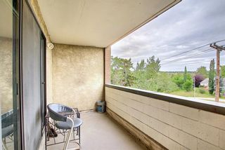 Photo 18: 212 8604 48 Avenue NW in Calgary: Bowness Apartment for sale : MLS®# A1138571
