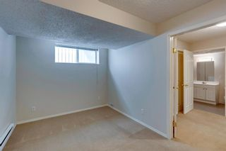 Photo 39: 131 Citadel Crest Green NW in Calgary: Citadel Detached for sale : MLS®# A1124177