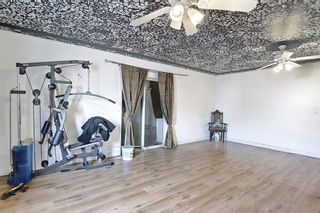Photo 28: 102 Martin Crossing Grove NE in Calgary: Martindale Detached for sale : MLS®# A1130397