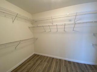 Photo 10: LA JOLLA Townhouse for rent : 4 bedrooms : 2848 Torrey Pines Rd