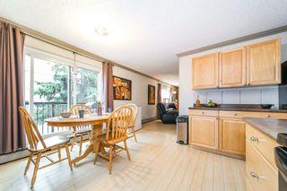 Photo 9: 208 7204 81 Avenue in Edmonton: Zone 17 Condo for sale : MLS®# E4255215