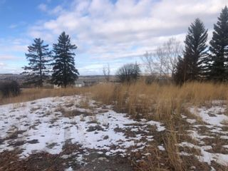 Photo 12: 16022 402 Avenue E: Rural Foothills County Land for sale : MLS®# A1051546