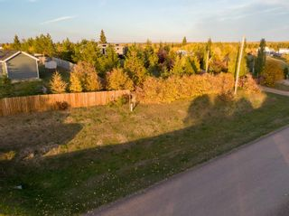 Photo 19: 252, 57201 Range Road 102: Rural St. Paul County Rural Land/Vacant Lot for sale : MLS®# E4264298