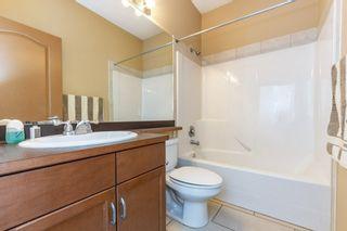 Photo 21: 3216 TREDGER Close in Edmonton: Zone 14 House for sale : MLS®# E4233312