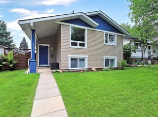 Main Photo: 3319 Temple Way NE in Calgary: Temple Detached for sale : MLS®# A1132248