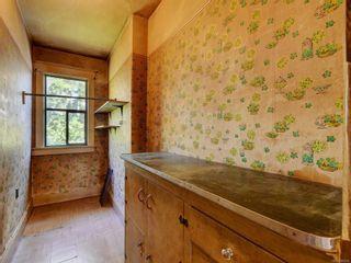 Photo 7: 1335 Grant St in : Vi Fernwood House for sale (Victoria)  : MLS®# 882004
