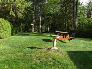 Photo 12: 39 Paradise Road in Kawartha Lakes: Rural Eldon House (Bungalow) for sale : MLS®# X3631024