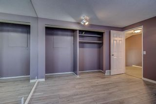 Photo 14: 4 Abergale Way NE in Calgary: Abbeydale Detached for sale : MLS®# A1068236