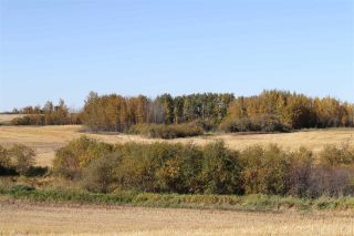 Photo 4: TWP 495 RR 232: Rural Leduc County Rural Land/Vacant Lot for sale : MLS®# E4216268