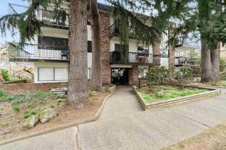 Photo 2: 305 2330 MAPLE STREET in Vancouver: Kitsilano Condo for sale (Vancouver West)  : MLS®# R2546675