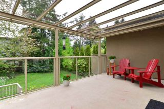 "Photo 14: 1499 PHOENIX Street: White Rock House for sale in ""West White Rock"" (South Surrey White Rock)  : MLS®# R2163364"