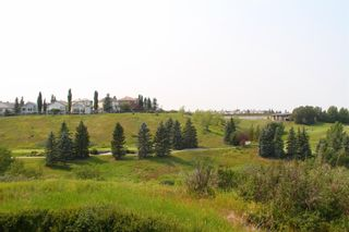 Photo 43: 137 Hamptons Square NW in Calgary: Hamptons Detached for sale : MLS®# A1132740