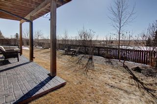 Photo 33: 464 400 Carriage Lane Crescent: Carstairs Detached for sale : MLS®# A1077655