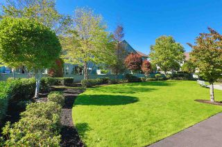 """Photo 20: 45 1255 RIVERSIDE Drive in Port Coquitlam: Riverwood Townhouse for sale in """"RIVERWOOD GREEN"""" : MLS®# R2004317"""