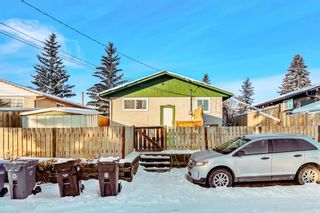 Photo 17: 168 Dover Meadow Close SE in Calgary: Dover Detached for sale : MLS®# A1082428