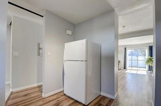 Photo 15: 56 251 90 Avenue SE in Calgary: Acadia Row/Townhouse for sale : MLS®# A1095414