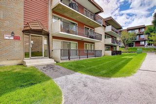 Photo 27: 78D 231 HERITAGE Drive SE in Calgary: Acadia Apartment for sale : MLS®# C4305999