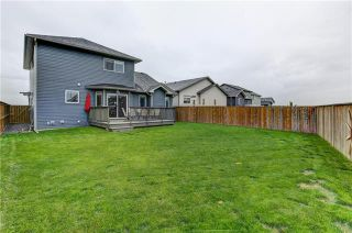 Photo 30: 25 Havenfield Drive: Carstairs Detached for sale : MLS®# A1061400