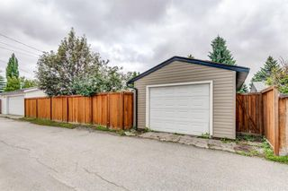 Photo 40: 10219 MAPLE BROOK Place SE in Calgary: Maple Ridge Detached for sale : MLS®# C4304932
