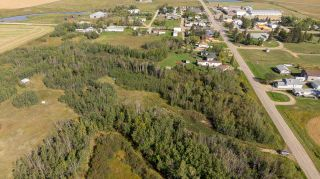 Photo 10: 55328 RRG 265: Rural Sturgeon County Rural Land/Vacant Lot for sale : MLS®# E4138970