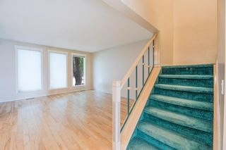 Photo 11: 639 TEMPLESIDE Road NE in Calgary: Temple Detached for sale : MLS®# A1136510