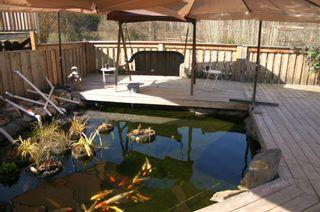 Photo 66: 21 McManus Road: Grindrod House for sale (Shuswap Region)  : MLS®# 10114200