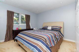 Photo 9: 627 Vanalman Ave in VICTORIA: SW Northridge House for sale (Saanich West)  : MLS®# 773325