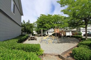 Photo 20: 105 22950 116 AVENUE in Maple Ridge: East Central Townhouse for sale : MLS®# R2377323