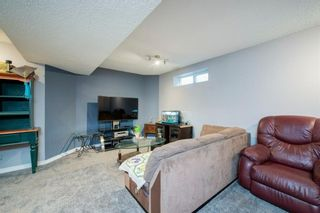 Photo 25: 26 Mt Aberdeen Link SE in Calgary: McKenzie Lake Detached for sale : MLS®# A1095540