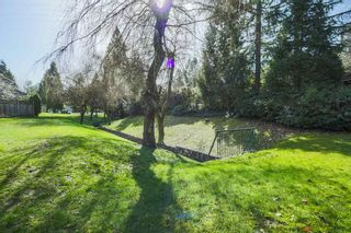 """Photo 17: 303 9155 SATURNA Drive in Burnaby: Simon Fraser Hills Condo for sale in """"Mountainwood"""" (Burnaby North)  : MLS®# R2042603"""