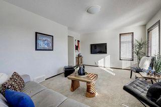 Photo 20: 60 CRANBERRY CI SE in Calgary: Cranston Detached for sale : MLS®# C4274885