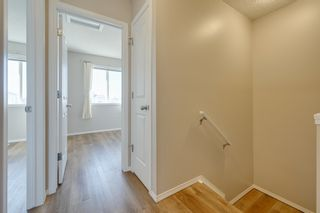 Photo 39: 20235 56 Ave NW: Edmonton House Duplex for sale : MLS®# E4238994