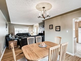 Photo 9: 1116 24 Street NW in Calgary: West Hillhurst Detached for sale : MLS®# A1093237